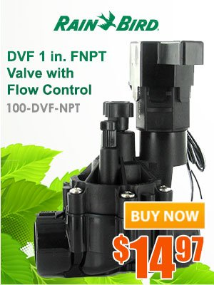 Rain Bird DVF 1 inch FNPT valve with Flow Control